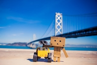 Danbo & Wall-E at SFO
